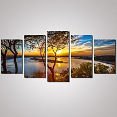 Landscape Szabadidő Virágos / Botanikus Fényképészeti Modern Hagyományos,Öt elem Vízszintes Nyomtatás fali dekoráció For lakberendezési
