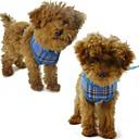 baratos Coleiras, Peitorais e Guias para Cães-Cachorro Arreios Respirável Náilon Malha Amarelo Rosa Vermelho Azul