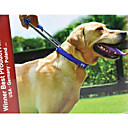 preiswerte Hundehalsbänder, Geschirre & Leinen-Hund Halsbänder Einstellbar / Tragbar / Rutschfest Solide Nylon Schwarz