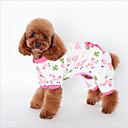 Недорогие Одежда и аксессуары для собак-Кошка Собака Толстовка Пижамы Одежда для собак Животное Желтый Синий Розовый Хлопок Костюм Для домашних животных Сплошной На каждый день