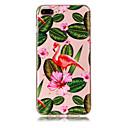 baratos Capinhas para iPhone-Capinha Para Apple iPhone X iPhone 8 Plus Transparente Estampada Capa traseira Flamingo Macia TPU para iPhone X iPhone 8 Plus iPhone 8