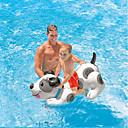 Недорогие Одежда и аксессуары для собак-Собаки Животные удобный ПВХ (поливинилхлорида) Детские Взрослые Все Игрушки Подарок