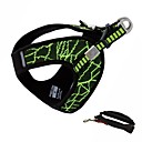 cheap Dog Collars, Harnesses & Leashes-Dogs Cats Pets Harness Breathable Adjustable / Retractable Natural Stripes Other Material Red Green Blue