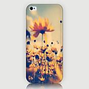 teléfono del modelo crisantemo cubierta trasera del caso para iphone5c