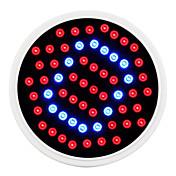 2.6W lm Voksende lyspærer 60 leds SMD 2835 Blå Rød AC 85-265V