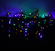 10M 100-LED Colorful Light 8-Mode LED Fairy String Lamp for (220V)