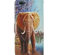 Недорогие -животные слон шаблон искусственная кожа флип защитный чехол с магнитной оснастки и слотом для карт iPhone 5с