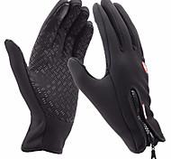 Недорогие -Лыжные перчатки Муж. Жен. Полный палец Сохраняет тепло С защитой от ветра Лайкра Катание на лыжах Спорт в свободное время