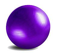 55cm Fitness Ball/Yoga Ball Yoga Gym PVC