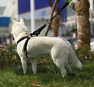 Собака Ремни Регулируется / Выдвижной Безопасность Тренировки Полиция/армия Черный