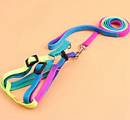 High Quality Pet RainBow Dog Collar accessories Strong Nylon dogs harness 2 size