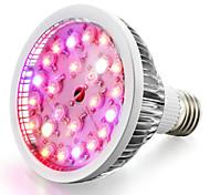 cheap -1pc 200-300lm E26 / E27 Growing Light Bulb 24 LED Beads High Power LED Warm White Natural White UV (Blacklight) Blue Red 85-265V