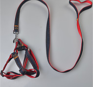 Dog Harness Leash Safety Solid Terylene