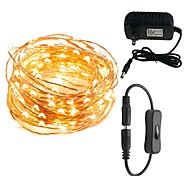 LED String Lights  10M  100 LEDs Waterproof Decorative Lights for Bedroom Patio Parties  12V 3A Power Plug Adapter Connector Inline On/off Switch