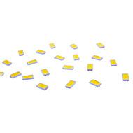 SMD 5730 50 lm LED Chip 0.5 W