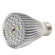 voordelige Kweeklampen-5W E26/E27 LED-kweeklampen PAR30 40 SMD 5730 800-1000 lm Koel wit Rood Blauw UV (blacklight) K Decoratief AC 85-265 V