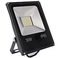 お買い得  -1個 30 W LEDフラッドライト 防水 / 装飾用 温白色 / クールホワイト 12-80 V 屋外照明 / 中庭 / ガーデン
