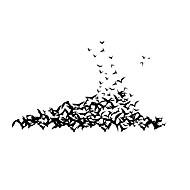 お買い得  -フローラル柄 / ホリデー ウォールステッカー プレーン・ウォールステッカー 飾りウォールステッカー,Vinyl 材料 取り外し可 / 再利用可 ホームデコレーション ウォールステッカー・壁用シール