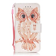 Shell Owl 3D Painting PU Phone Case for apple iTouch 5 6 iPod Cases/Covers