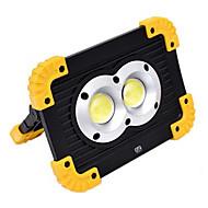 abordables Focos LED-YWXLIGHT® 1pc 20 W Focos LED Nuevo diseño / Cool Blanco Fresco 4.5 V Iluminación Exterior 2 Cuentas LED