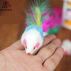 Zabawka dla kota Zabawki dla zwierząt Wędki dla Kota Zabawka z piórkami Myszka Dla zwierząt domowych