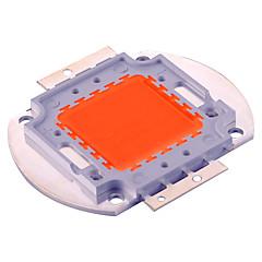 preiswerte LED-Birnen-YWXLIGHT® 1pc 30 W 1500 lm Girlande Wachsende Glühbirne 30 LED-Perlen Integriertes LED Dekorativ Lila 30-36 V / 1 Stück / RoHs