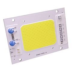 50w led cob siru vedenpitävä ip65 led-lamppu 220v smart ic diy kohdevalaisin valonheitin lämmin / viileä valkoinen (1 kpl)