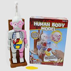 Brinquedos de Pegadinha Brinquedos Tema de Horror Dia Das Bruxas Peças Dom