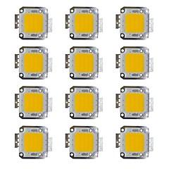 お買い得  LED-30wのコブ2400lm 3000-3200k / 6000-6200k暖かい白い/白いledチップdc30-36v 12個
