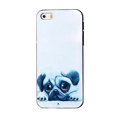 caso difícil padrão pug para iPhone 5 / 5s