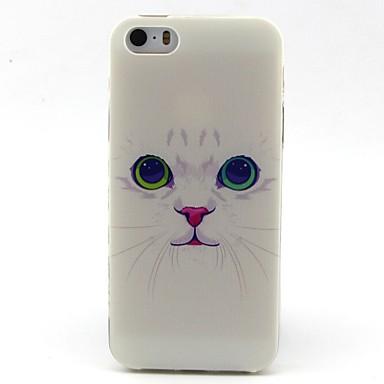 Voor iPhone 5 hoesje Patroon hoesje Achterkantje hoesje Kat Zacht TPU iPhone SE/5s/5