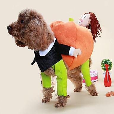 Pisici Câine Costume Îmbrăcăminte Câini Clasic Draguț Cosplay Casul/Zilnic Modă Desene Animate Curcubeu Costume Pentru animale de companie