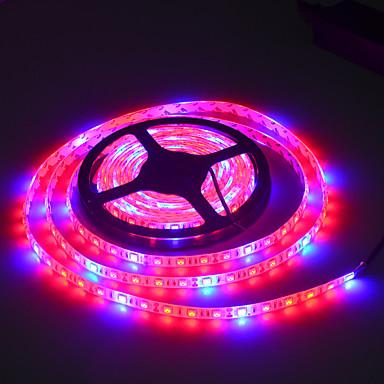 JIAWEN 300 LEDs Mehrfarbig AC100-240 Wechselstrom 100-240V