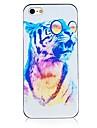 padrão de leopardo colorido preto quadro de volta caso para iphone 4 / 4s