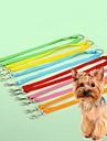 Gato Cachorro Trelas Retratavel Fantasias Nailon Amarelo Vermelho Verde Azul Rosa claro