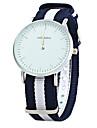 Men\'s Dress Watch Fashion Watch Quartz / Leather Band Casual Cool Blue