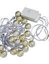 Jiawen 20-LED 5M warm white Holiday Decoration String Light (AC 110-220V)