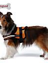 Собака Ремни Отражение Дышащий Однотонный Сетка Ткань для подбивки Нейлон Сетка Черный Оранжевый Красный