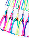 Cat Dog Harness Leash Breathable Safety Rainbow Nylon Rainbow