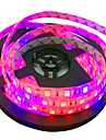 Plant light strip 300 LEDs Blue Red Cuttable Waterproof Self-adhesive Linkable DC 12V