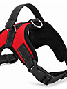 Dogs / Cats / Pets Harness Portable / Trainer / Walking Solid Colored Nylon Red / Camouflage Color / Leopard