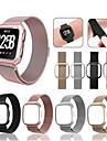 Ремешок для часов для Fitbit Versa Fitbit Спортивный ремешок / Миланский ремешок Нержавеющая сталь Повязка на запястье